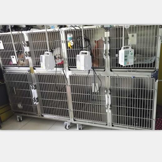 宠物住院寄养笼