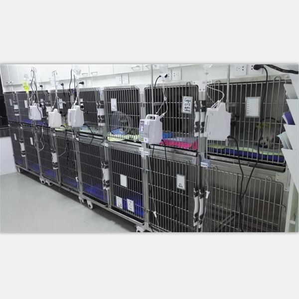 多组合宠物住院寄养笼