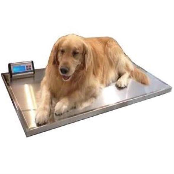 宠物电子秤