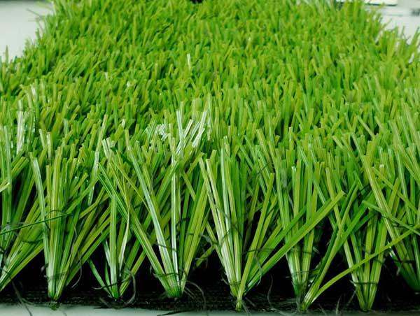 室外人工草坪