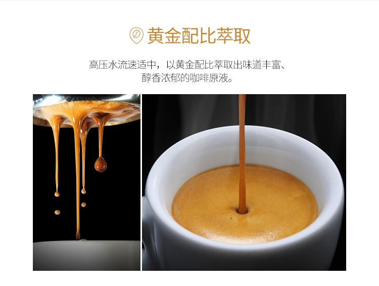 西诺泵压式咖啡机