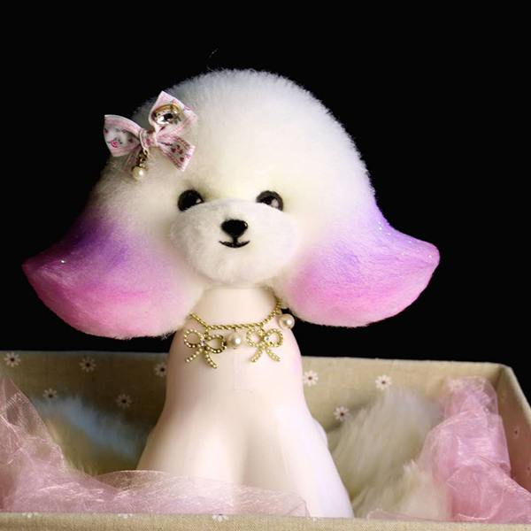哈尔滨宠物美容学校哪家好