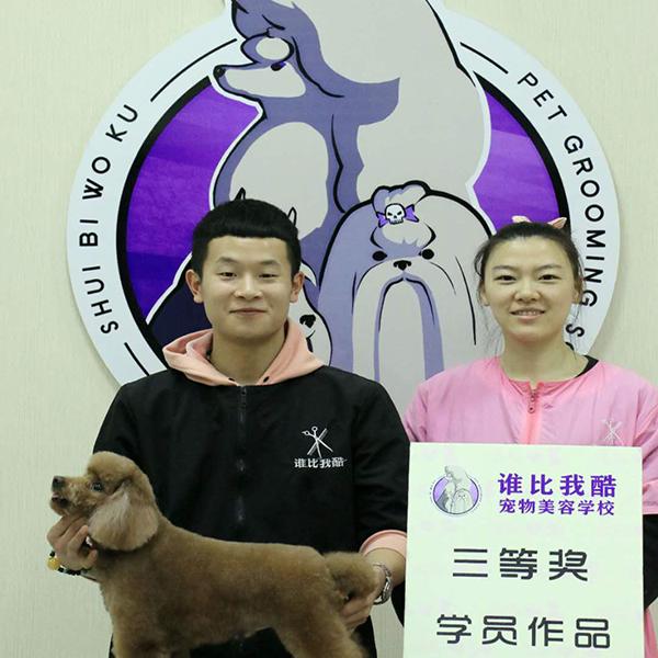 哈尔滨宠物学校地址