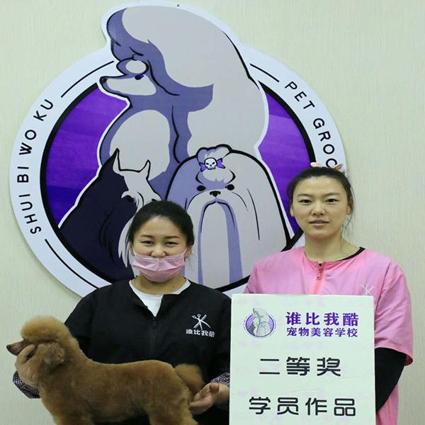 哈尔滨宠物学校电话