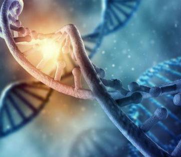 贵阳癌症基因检测