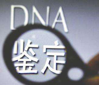 璐靛�DNA�村��涓�蹇�
