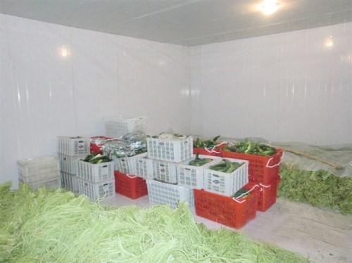 果蔬冷藏库价格