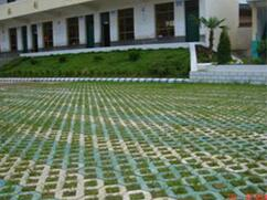 停车场草坪砖厂家