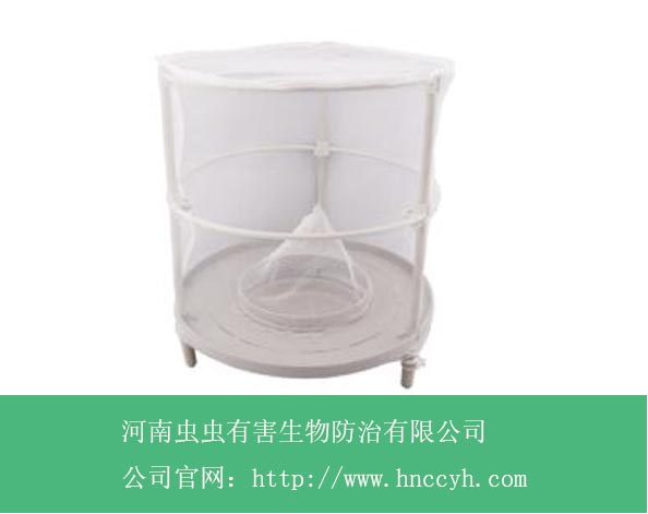 白色捕蝇笼