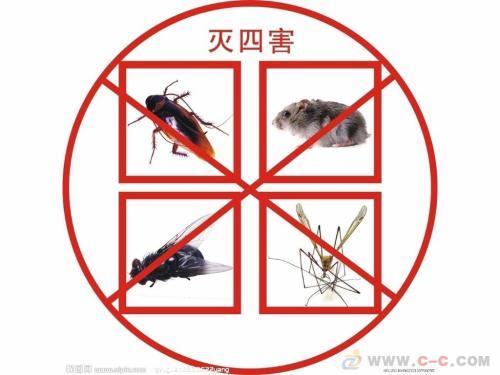 灭蚊蝇攻略
