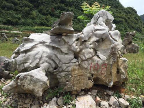 贵阳古生物化石