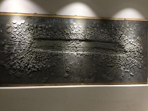 贵州古生物化石装饰