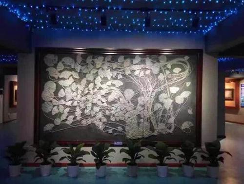 关岭海百合化石