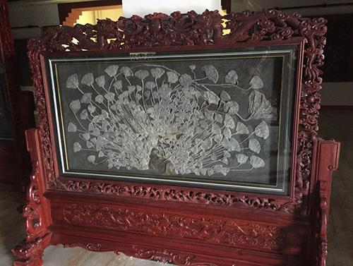 关岭海百合化石研究价值