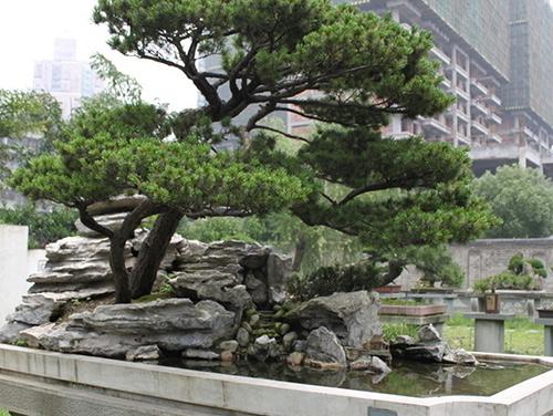 贵州景观石