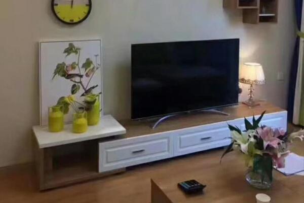 襄阳定制电视柜