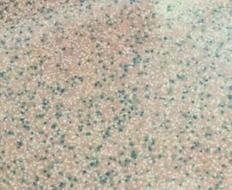 环氧浮动采砂自流平