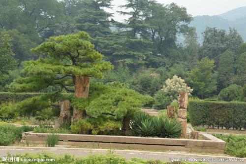 贵阳园林绿化