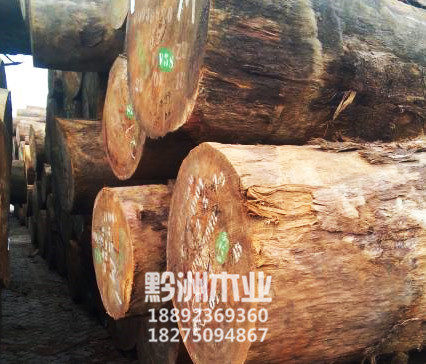 贵州进口原木