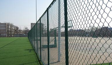 浸塑护栏网