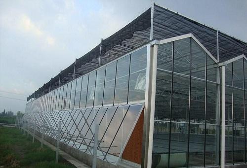 河南玻璃温室大棚
