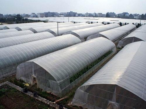 郑州日光温室