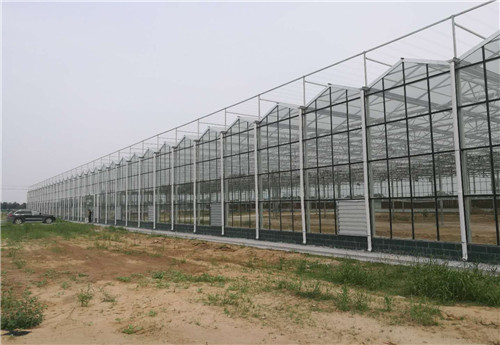 郑州阳光板智能温室