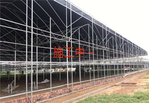 河南温室建设