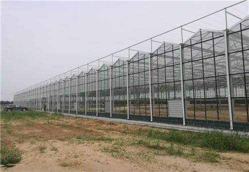 河南智能温室建造