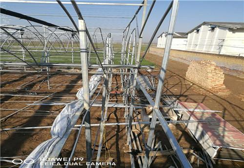 河南温室大棚建设