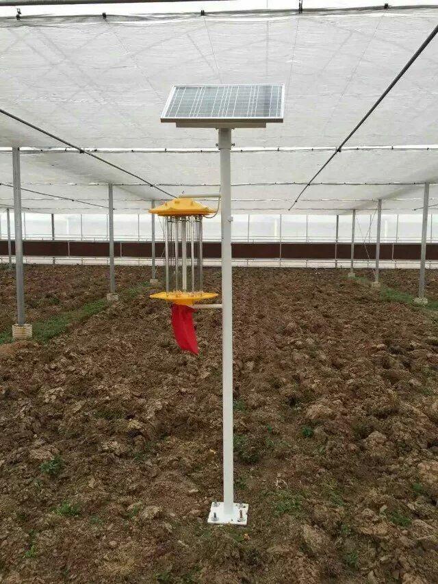 四川太陽能殺蟲燈