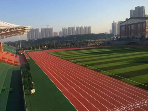 人造草坪塑胶跑道