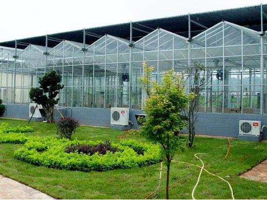 河南智能玻璃温室