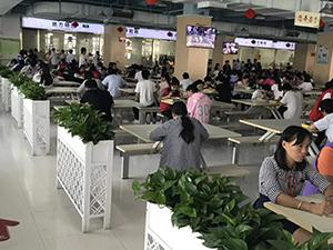 深圳临时工