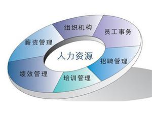 广州人力资源外包