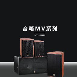 贵阳专业音箱公司