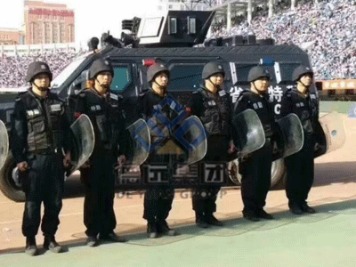 河北专业保安公司