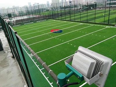 石家庄足球场人造草坪