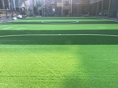河北足球场人造草坪
