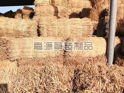 綠化專用稻草草簾