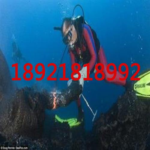 水下检测公司