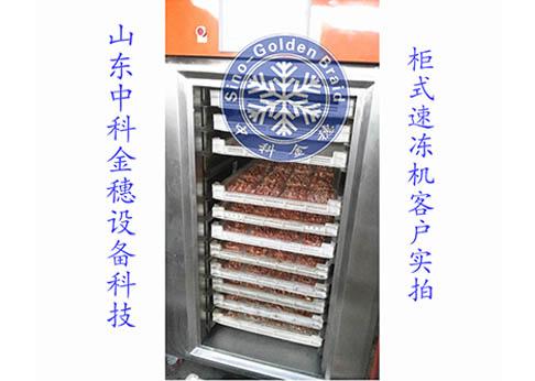小型液氮速冻柜