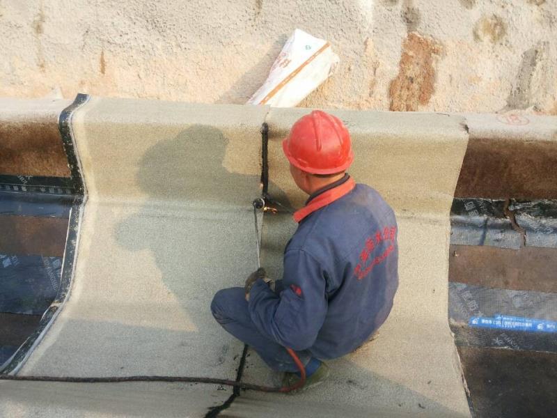 专业防水工程厂家