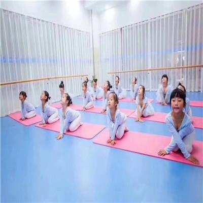 舞蹈专用地胶地板