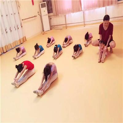 石家庄舞蹈专用地胶