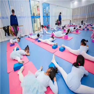 石家庄舞蹈专用地板