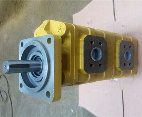 液壓設備改裝用泵