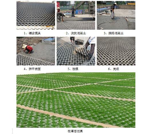 四川生态植草地坪