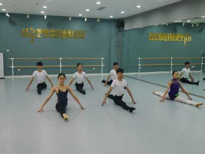 高考舞蹈辅导培训
