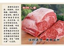 黔南豪猪肉
